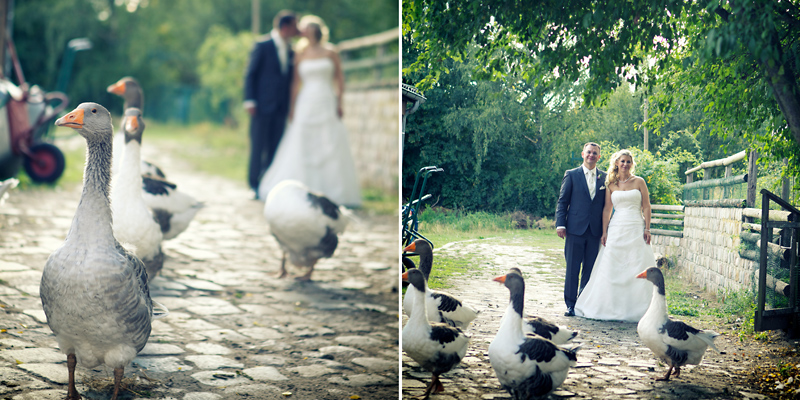 Hochzeitsfotografie_Hochzeitsreportage_Berlin_Familienfarm_Lübars_Landhochzeit_schneeweiß_Rosenrot_Hochzeitsfotos